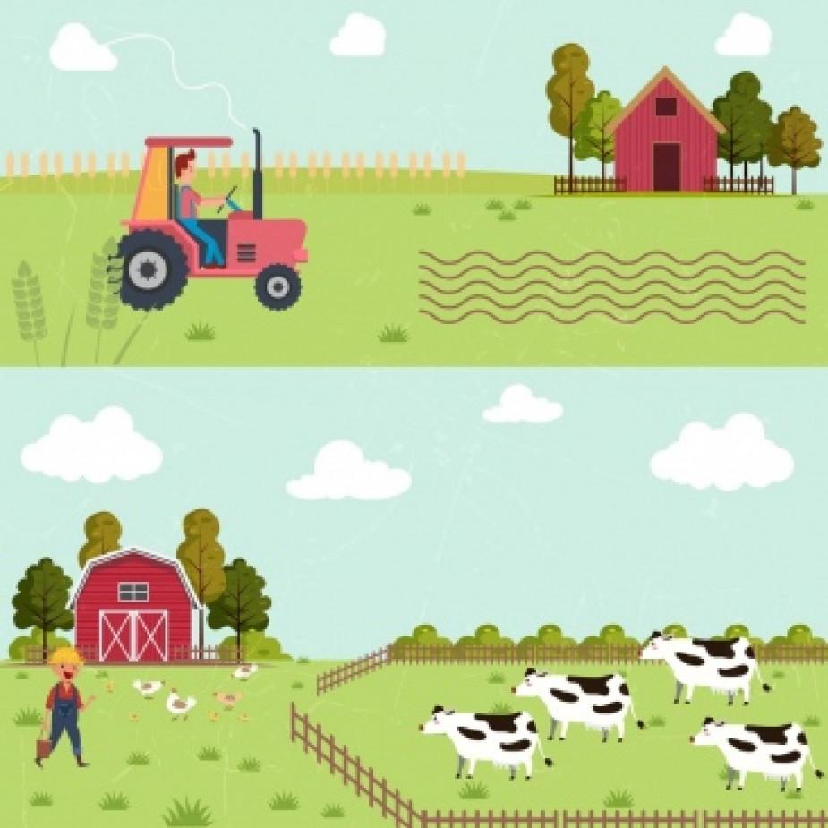 Skelbimo Pieno Ūkyje reikalingi darbuotojai nuotrauka