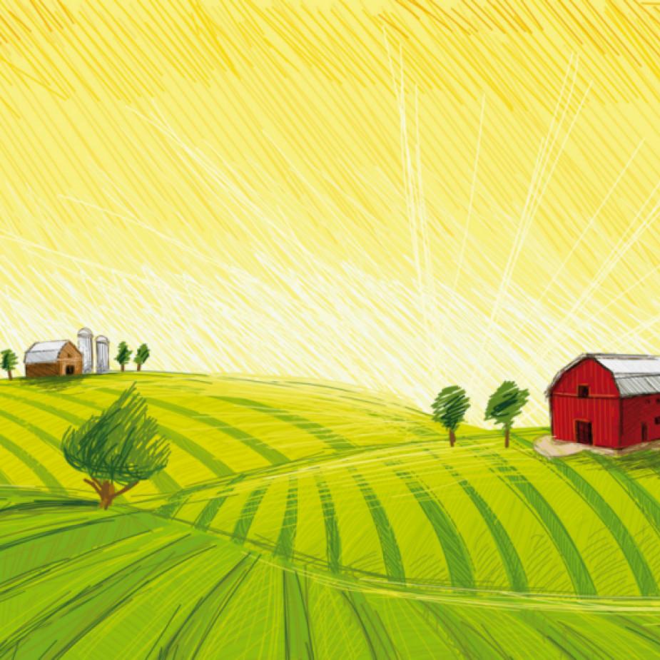 Skelbimo Reikalingi darbininkai ūkyje, Raseinių raj. nuotrauka